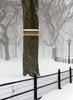 Wakefield Premium Bird Houses Winter Bird Shelter Nesting Perch