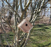 View of the Cedar Birdhouse from farther away