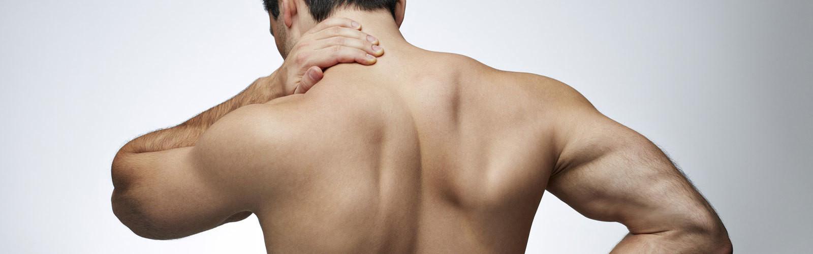 Back/Neck/Shoulders