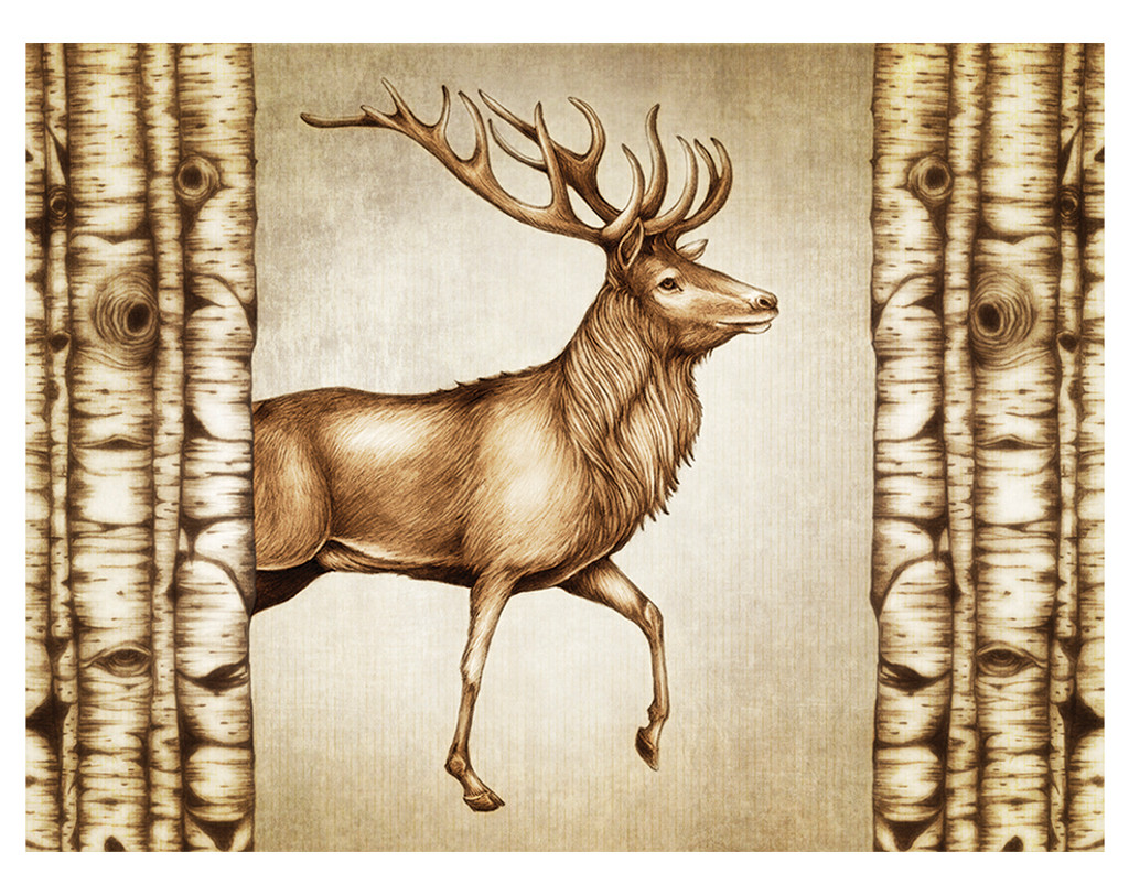 Note Cards: Deer