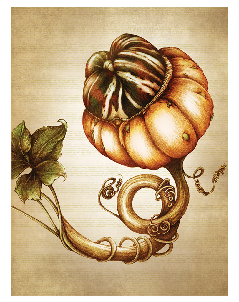 Note Cards: Gourds