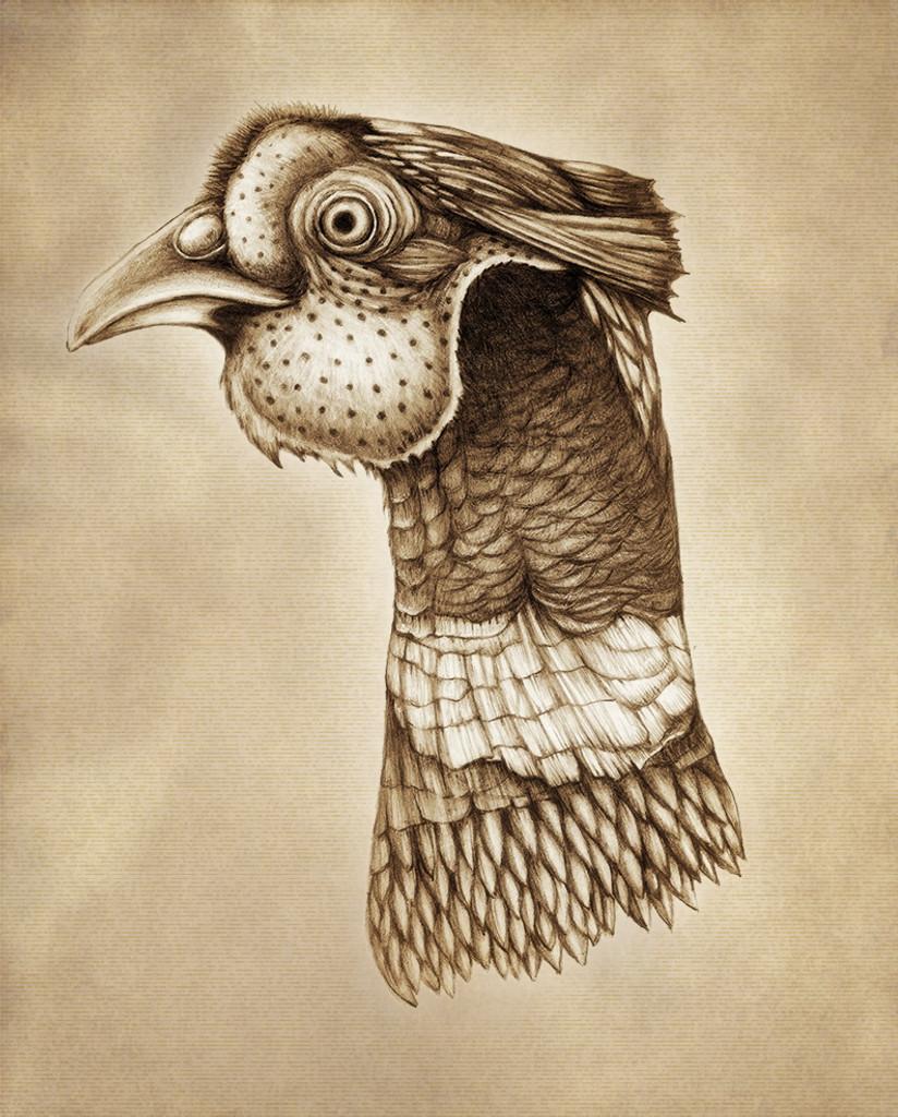 Prints : Pheasant Head 8X10 Unframed