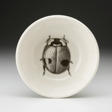 Cereal Bowl: Lady Beetle