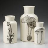 Set of 3 Jars: Mushrooms