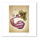 Prints : Cushaw Gourd, 11X14 Unframed