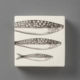 Wall Box: Sardines