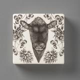 Wall Box: Angus Bull