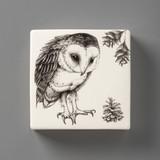 Wall Box: Barn Owl