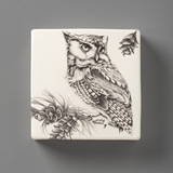 Wall Box: Screech Owl #1