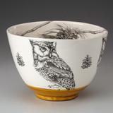 Large Bowl: Screech Owl #1