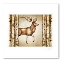 Prints : Red Buck, 11X14 Unframed