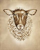 Prints : Suffolk Sheep, 8X10 Unframed