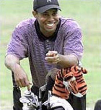 Daphne's HeadCovers: Tiger Golf Club Cover