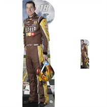 Team Image: Lifesize & Miniature Cardboard Cutout Combo - Kyle Busch #18 (Brown)