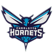 NBA Charlotte Hornets 3D Fan Foam Logo Sign by Foamheads