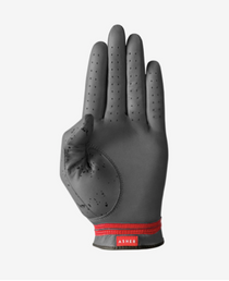 Asher Golf: Mens Premium Golf Glove -  Alta 2.0