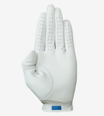 Asher Golf: Mens Utility Golf Glove - Space