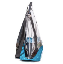 Sassy Caddy: Clear Tote Bag - Baltic