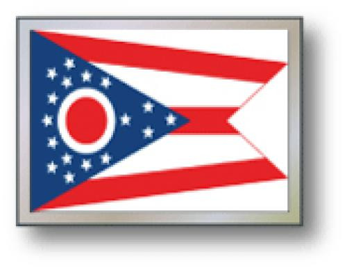 SSP Flags: 11x15 inch Golf Cart Replacement Flag - Ohio