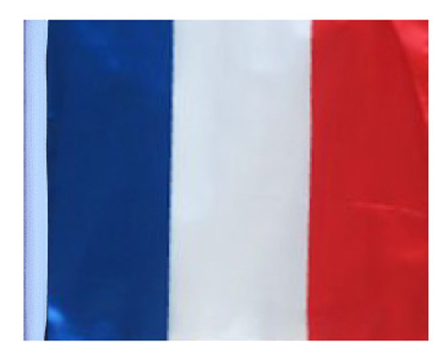SSP Flags: 11x15 inch Golf Cart Replacement Flag - France