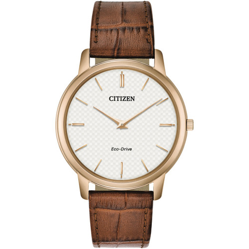 Citizen Mens Eco-Drive Watch AR1133-15A