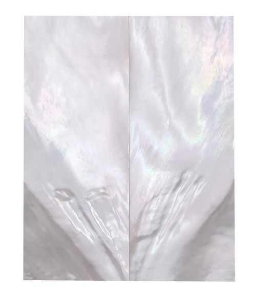 """White Mother of Pearl """"Bright"""" Pair  Grade B 3 1/4 x 1 1/4 x .140  #59"""