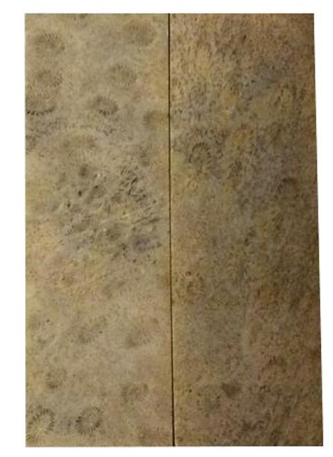 Lavendar Coral Pairs-3 1/8 x 1 1/8 x .150 #4