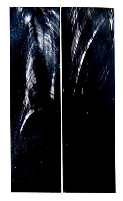 Smooth Black & White Buffalo Horn (Flat Top)