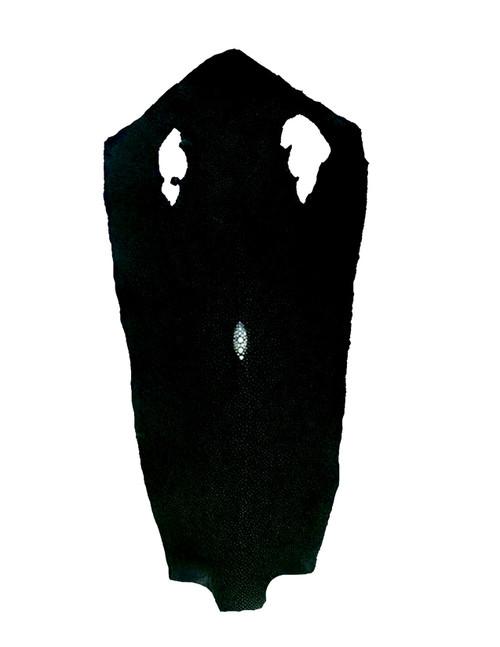 Tanned Single Crown Stingray Skins
