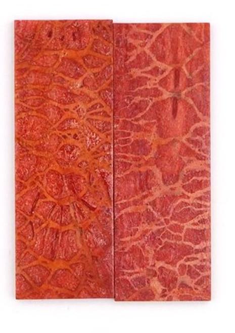 Apple Coral Pair 3 1/4 x 1 1/8 x 3/16 #4