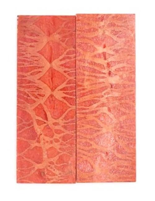 Apple Coral Pair 3 1/4 x 1 1/8 x 3/16 #1