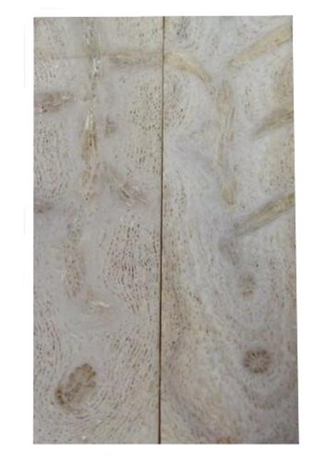 Lavendar Coral Pairs 3 15/16 x 1 3/16 x .185 #9