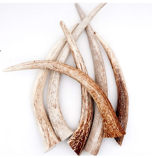 """Natural Stag Tines 4"""" - 11"""""""