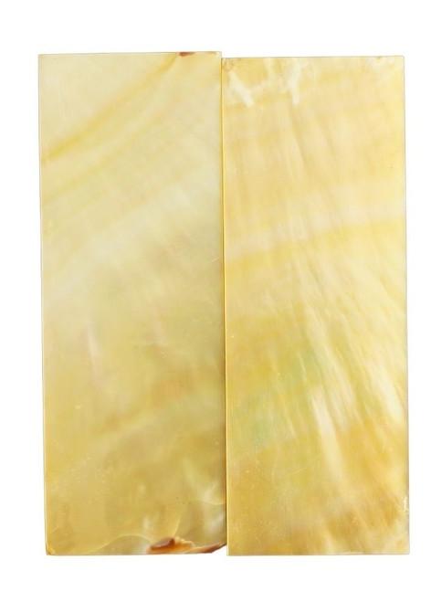 Goldlip Pair 2 13/16 x 1 x .078 #45