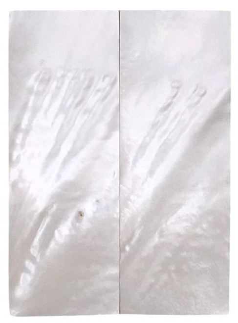 """White Mother of Pearl """"Bright"""" Pair Grade B 3 1/2 x 1 1/4 x .155 #37"""