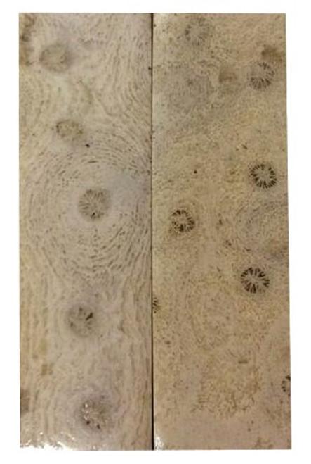 Lavendar Coral Pairs-3 1/2 x 1 1/8 x .185 #5
