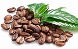 Ground Arabica coffee beans, the ultimate exfoliant for clean, glowing, smooth skin!