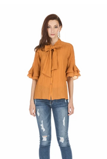 Tie Front Flared Sleeve Blouse