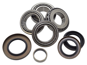 Discovery 4 Rear Locking Differential Bearing Overhaul Kit - DA5038