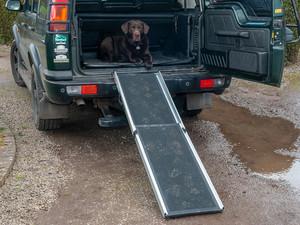 JGS4x4   Vehicle Access Dog Ramp Foldable - DA1631