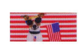 American dog hair clip