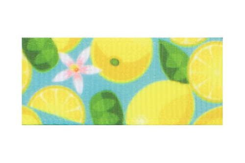 Toddler Hair Clips with Yellow Lemons on Turquoise Background