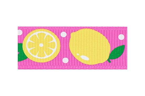 Primary Yellow Lemon and Hot Pink Hair Clip for Toddlers
