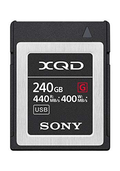 Sony G-Series QD-G240F - Flash memory card - 240 GB