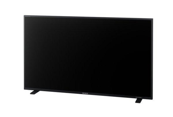 "Sony TRIMASTER EL PVM-X550 - OLED display - color - 55"" - High Definition"
