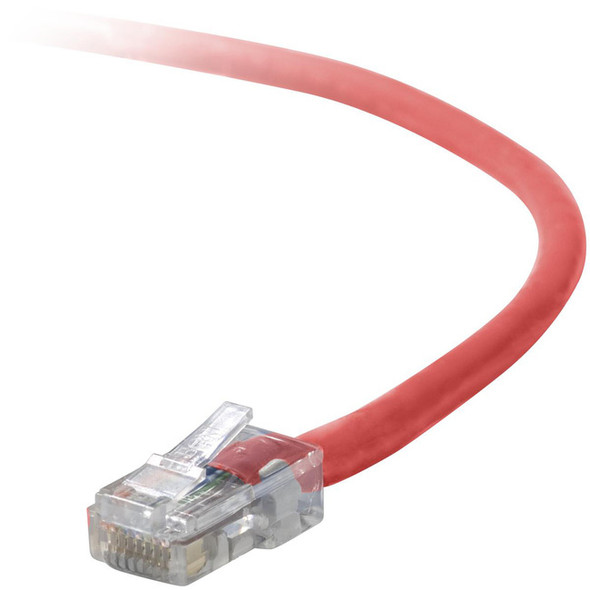 Belkin Cat5e Patch Cable - A3L791-02-RED