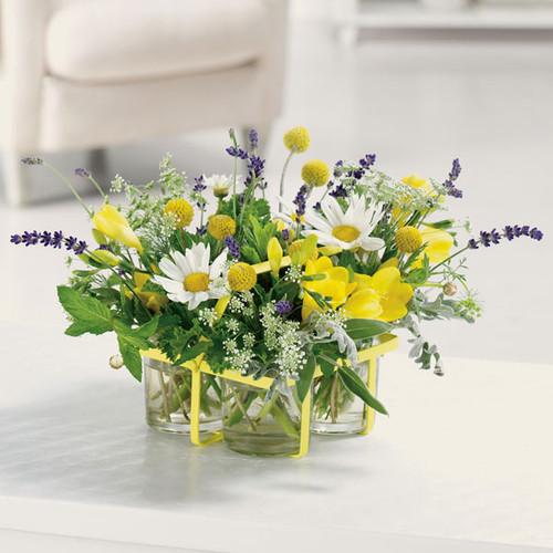Herbs & Flowers