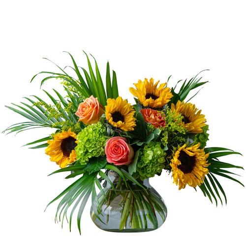 Sunflower Kisses