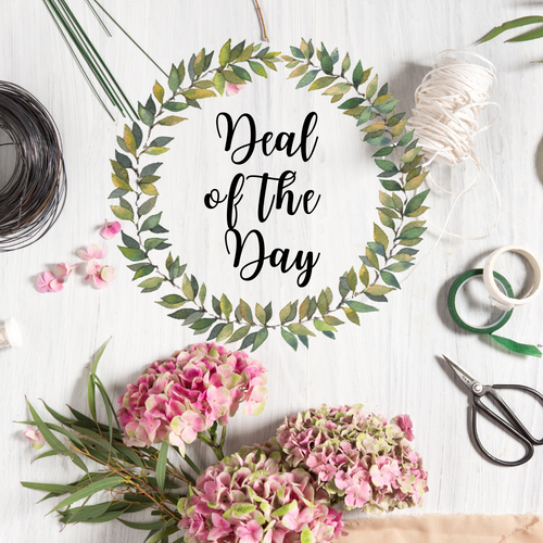 House of Blooms Deal of the Day