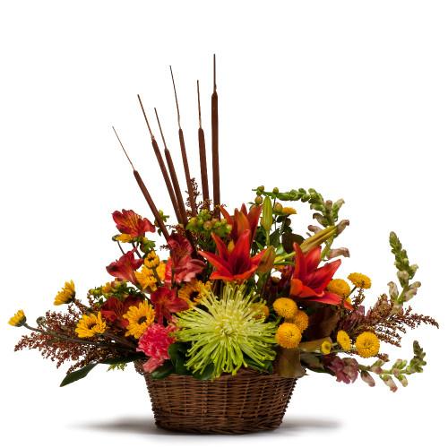 Abundant Basket